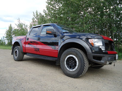 Ford Raptor shelby decals (1)