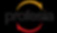 31804746-0-logo-profesia-color.png