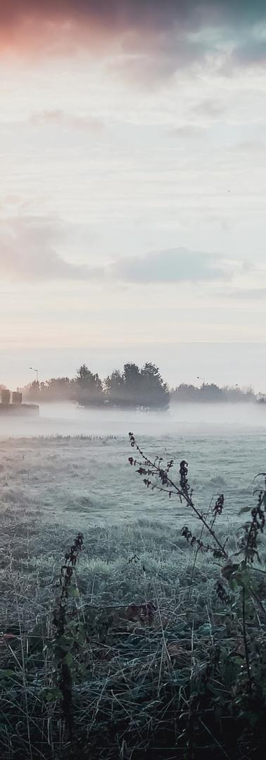 Paris Morning Landscape Photography