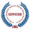 SDVOSB-logo-768x768.jpg