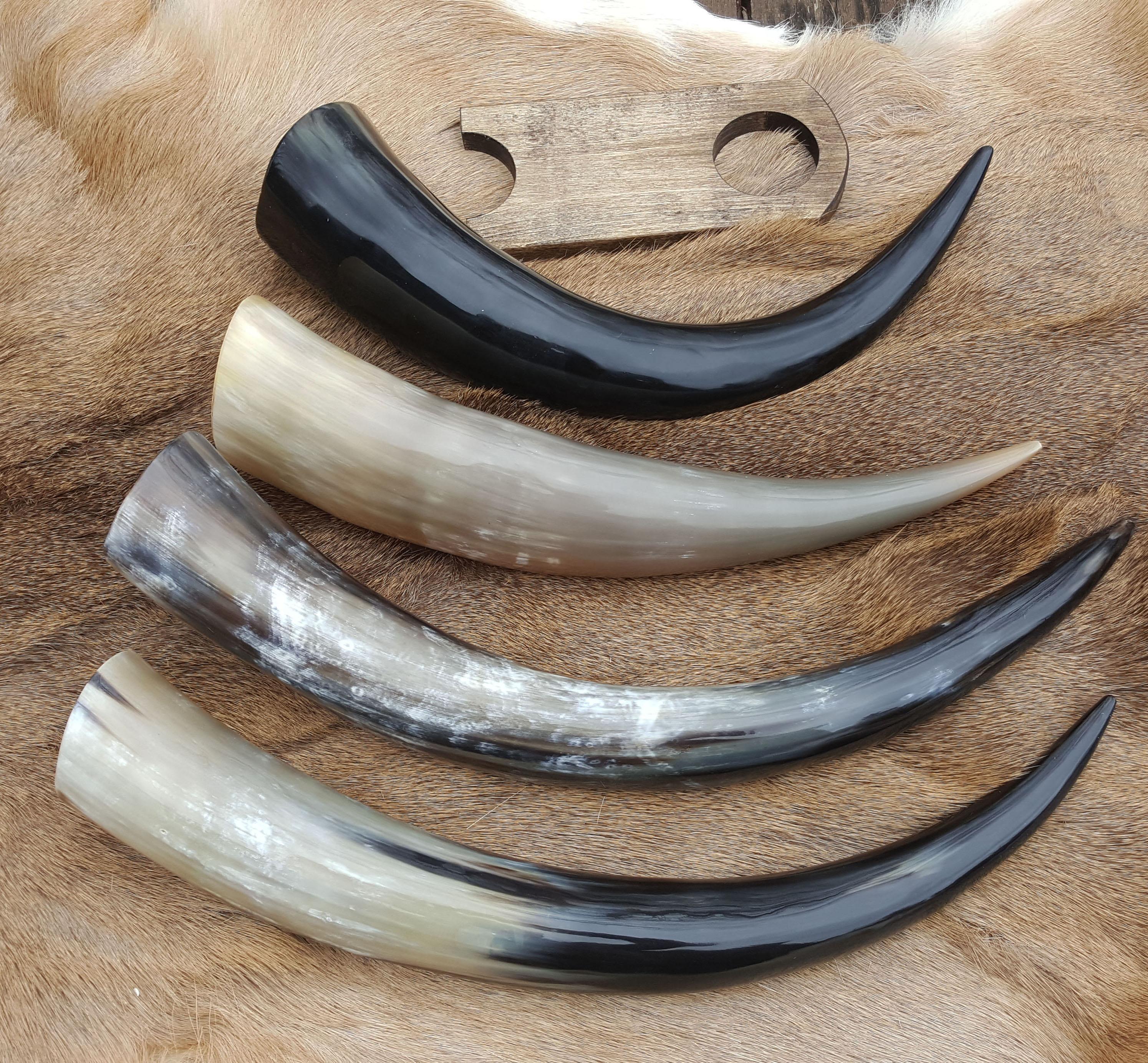 lg horns