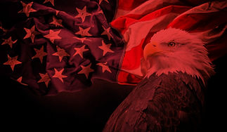 Flag%20Eagle%20MWN_edited.jpg