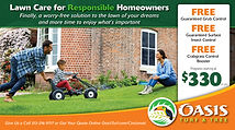 Oasis Lawn & Turf Direct mail designs for quarterly lawn treatment/maintenance programs.