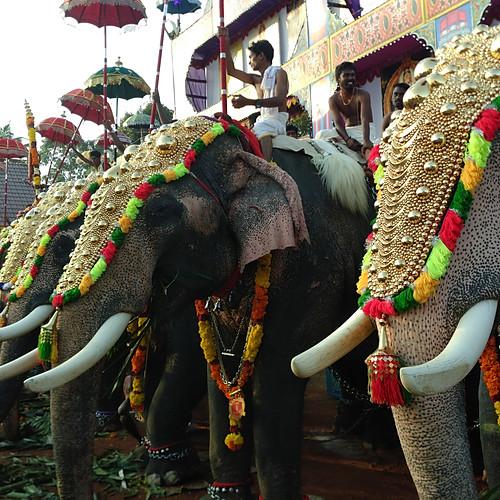Temple-Fest, Sree Narayana Gurudeva Temple, Neendoor, Kerala-Jan.2018
