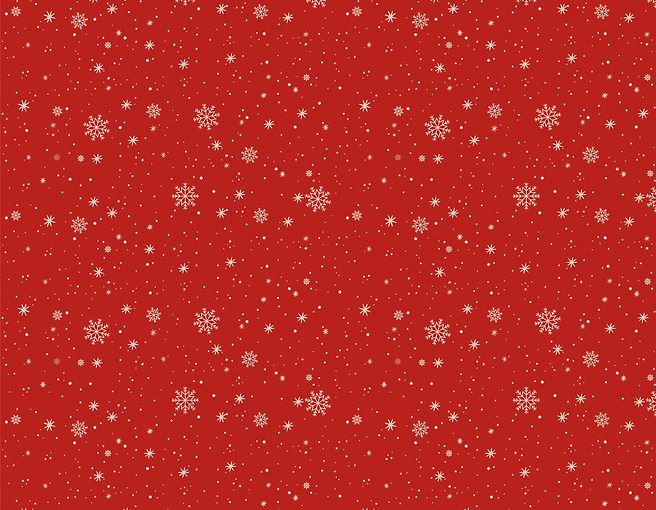 MIRACLE-pattern_Snowflake-WEB.jpg