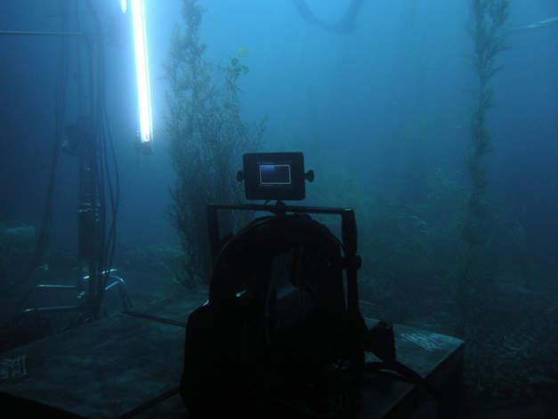 Unterwasser Kamera filmyard