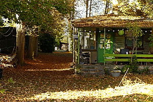 Grüne_Villa_Herbst_1.jpg