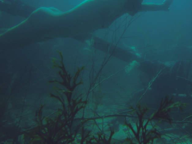 Im Angesicht des Vebrechens Set Unterwasser filmyard
