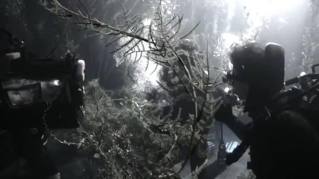 UW Planzen Trailer 480p.mov
