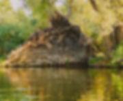 backdrop wurzel 4m 1.jpg