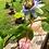 Thumbnail: Rose Quartz air plant holder