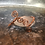 Thumbnail: Copper Cuff