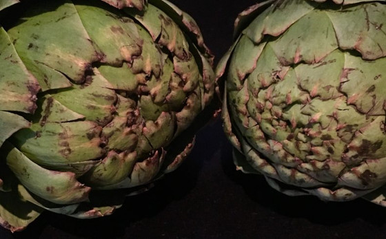 Why Globe Artichokes Are The Nutritional Bomb!