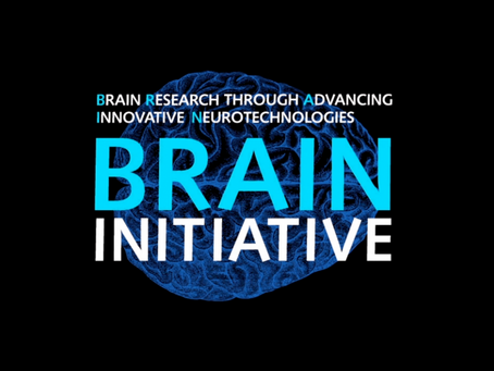 Brain Modulation Lab awarded BRAIN Initiative U01