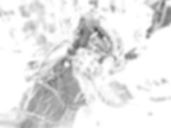 ROSA_MER_ECoG_edited.jpg
