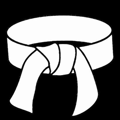 White Belt Certification Class