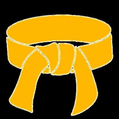 Yellow Belt Certification Class