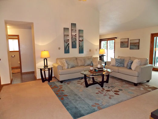 home staging, home stager, iowa home staging, iowa home stager, vacant staging, occupied staging, real estate photography, iowa real estate photography, living room staging