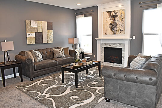home staging, home stager, iowa home staging, iowa home stager, vacant staging, occupied staging, real estate photography, iowa real estate photography, cedar falls home staging, cedar falls home stager, builder home staging, living room staging, great room staging