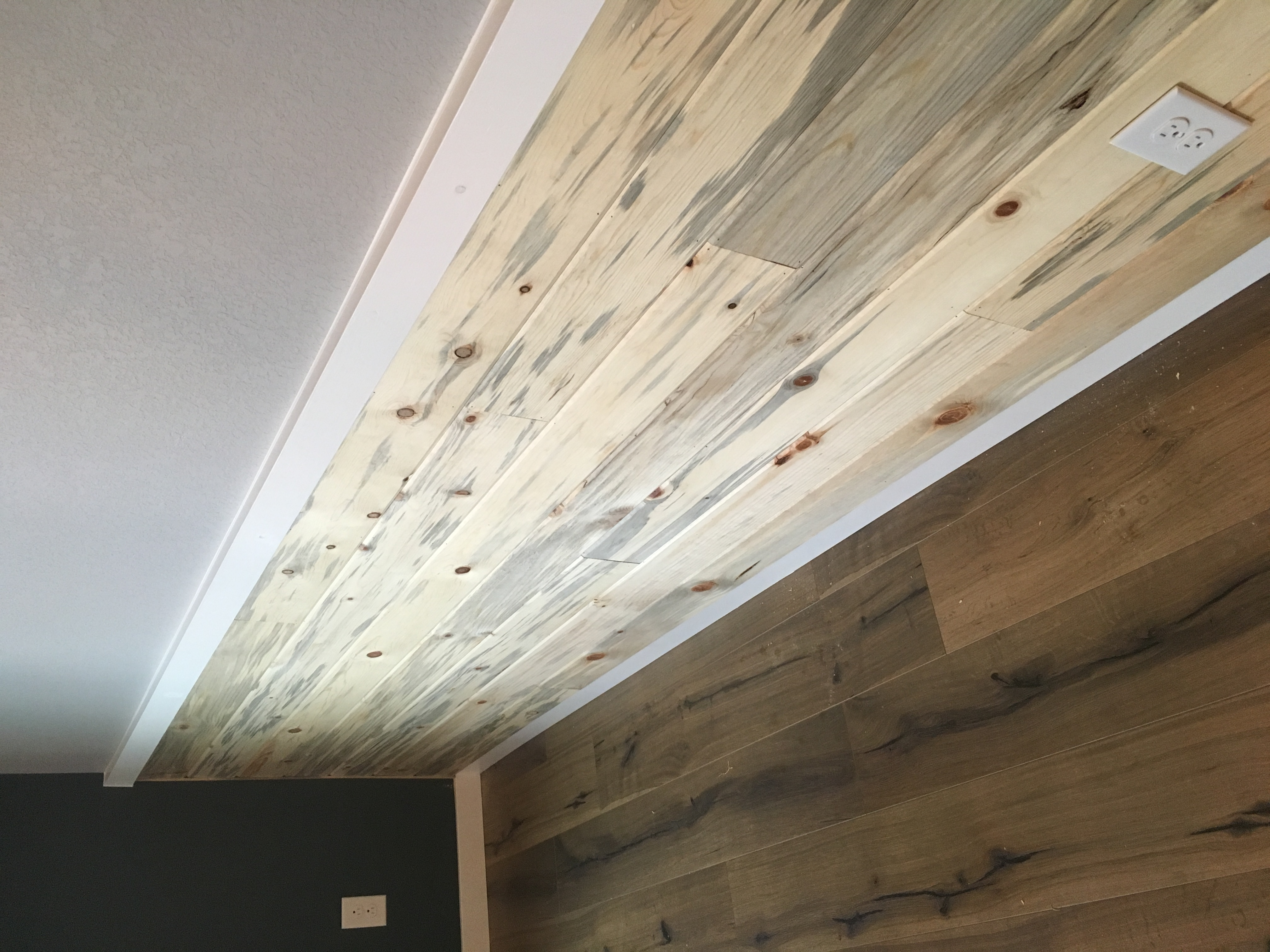 Beetle Kill Accent Wall