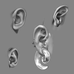 ear studies 2