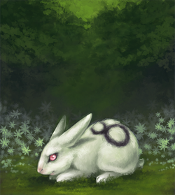 time-travelling bunny