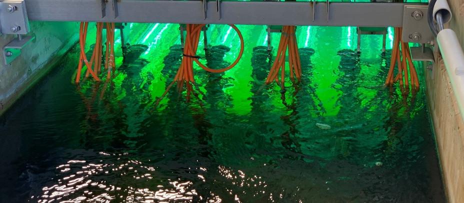 El coronavirus se mantiene estable en las aguas residuales de Alcobendas