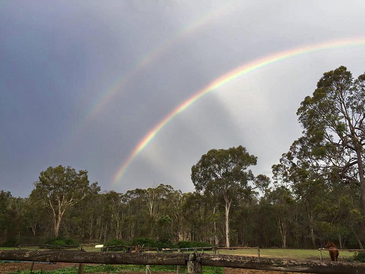 DH Rainbow