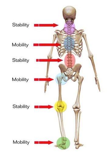 mobility vs stability.png