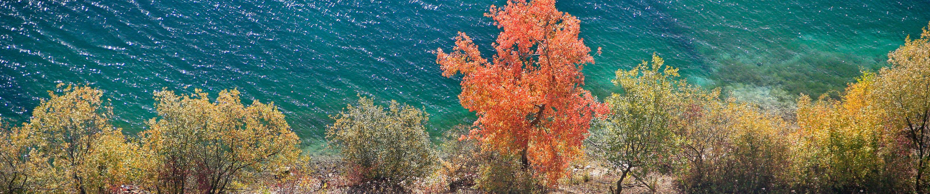 Lac Bleu Roeux - 62