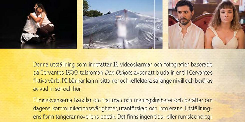 Vernissage: Mieke Bal