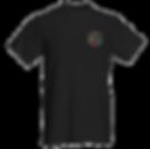 tshirt trans.png