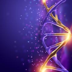 DNA AVANÇADO