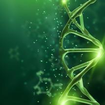 DNA BÁSICO