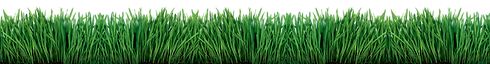 smg-grass.png