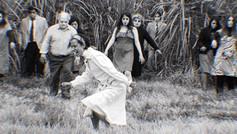 Zombies in the sugar cane field   Director: Pablo Schembri