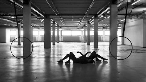 Speedy Spider   Director: Paula Alvala & Margreet Nuijten