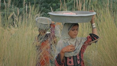 Gando | Director: Teymour Ghaderi