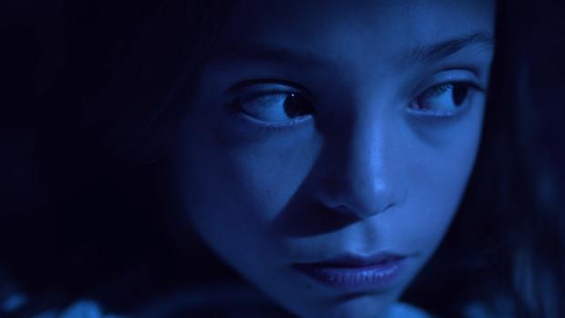 Flycatcher | Director: Guillermo Trujillo Accini
