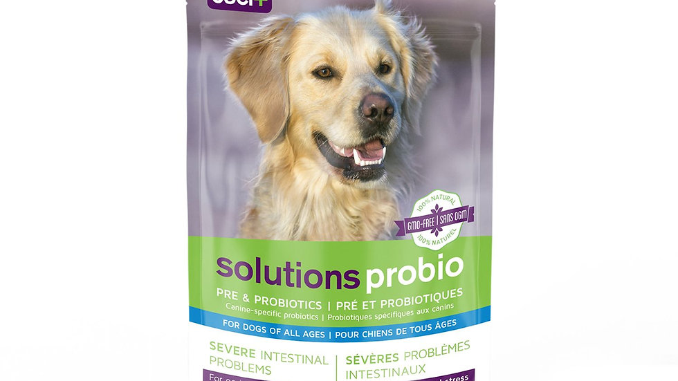 Probiotic paste for dogs