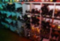 restaurant-welcome-crop-w800.jpg
