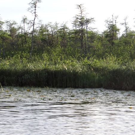 PK RESORT FLY IN FISHING CANADA LAKES.jp