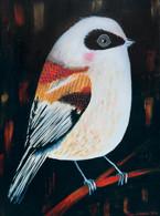 Pikkulintu lauloi: Paintings of endangered Finnish birds, 2016