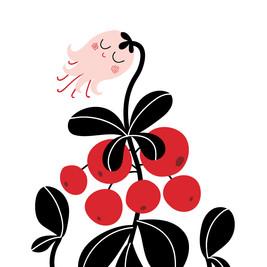 Berry & Mushroom posters, 2016