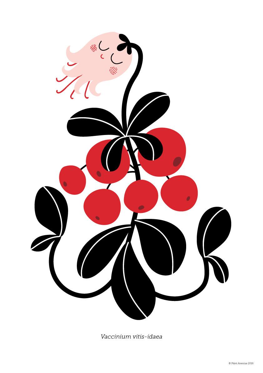 Puolukka, Berry & Mushroom posters, 2016