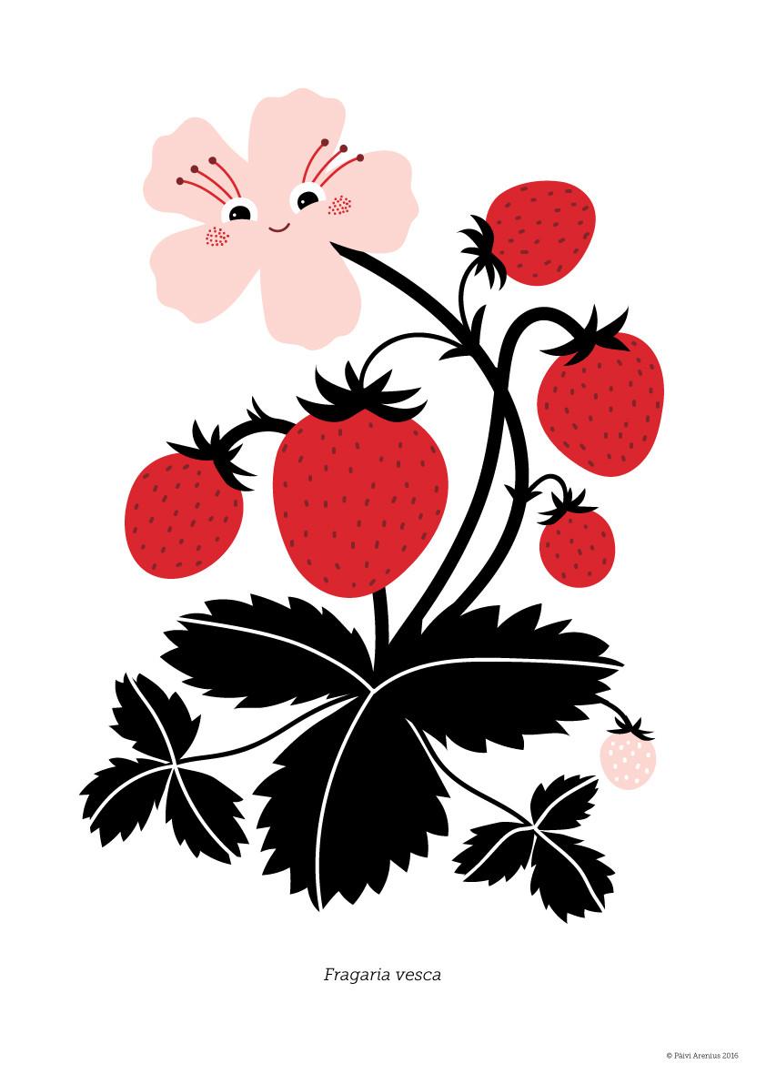 Ahomansikka, Berry & Mushroom posters, 2016