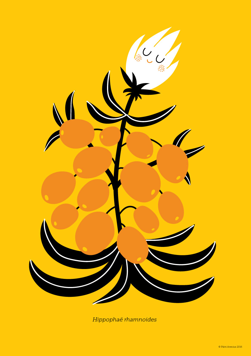 Tyrni, Berry & Mushroom posters, 2016
