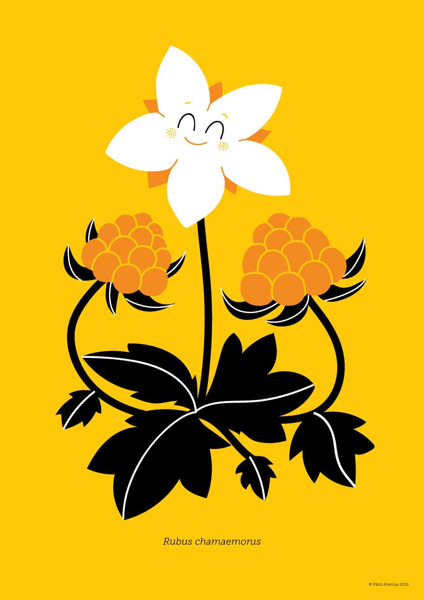 Lakka, Berry & Mushroom posters, 2016