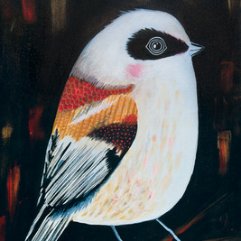 Pikkulintu lauloi: Paintings of Finnish endangered birds, 2016