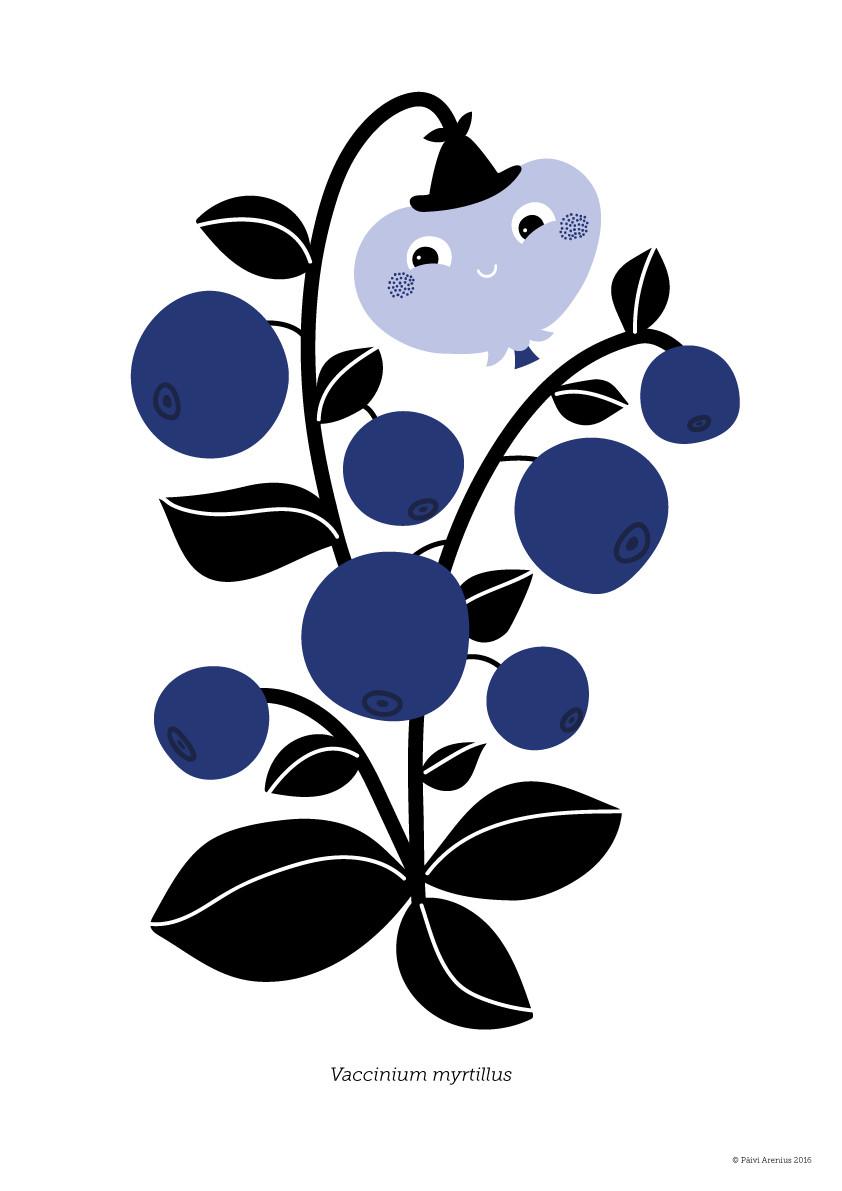 Mustikka, Berry & Mushroom posters, 2016